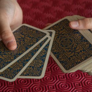 playing cards, cards, player